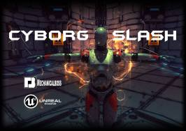 Cyborg Slash - cartel